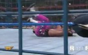 Bret Suphlexing Owen Off the Cage